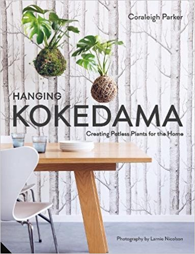 Hanging Kokedama Potless Plants